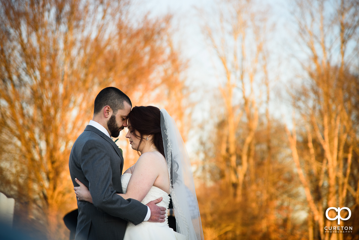 Bride and groom standing in front of trees glowing in warm sunlight.