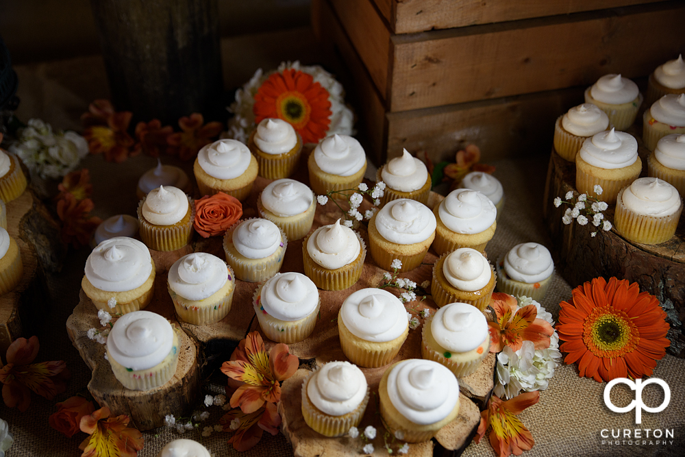 Beautiful cupcakes by Holly's cakes.