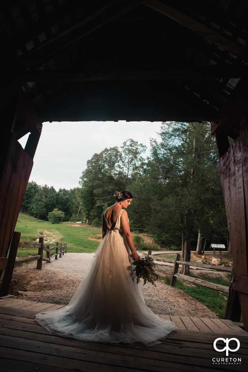 Bride in golden hour light.