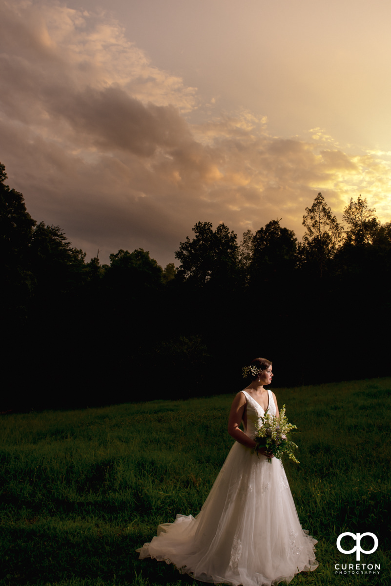 Bride looking into the distance at her sunset bridal session in Greer,SC.