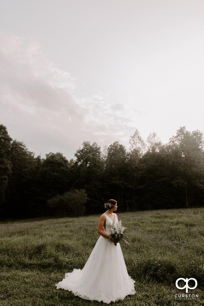 Bride looking out into a field.
