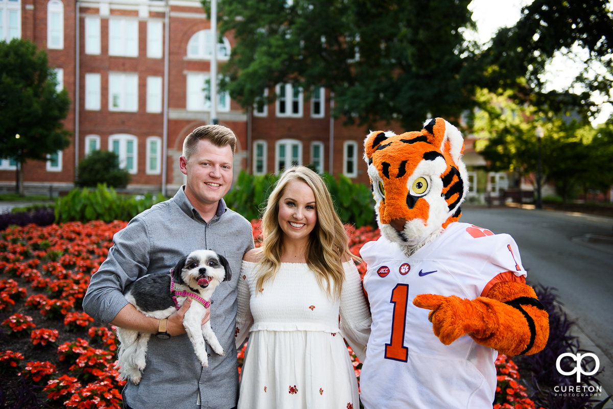 Engaged couple posing with their dog and the Clemson Tiger.