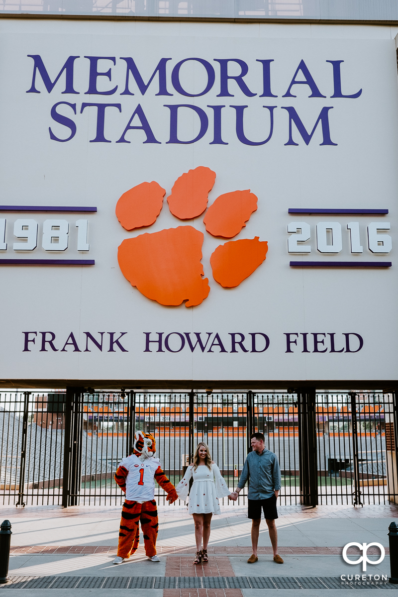 Engaged couple holding hands with the Clemson Tiger in front of Memorial Stadium at the hill.