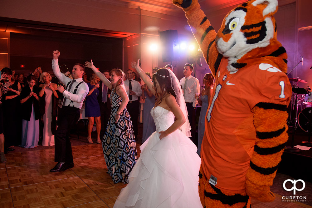 The Clemson tiger makes an appearance at the wedding reception.