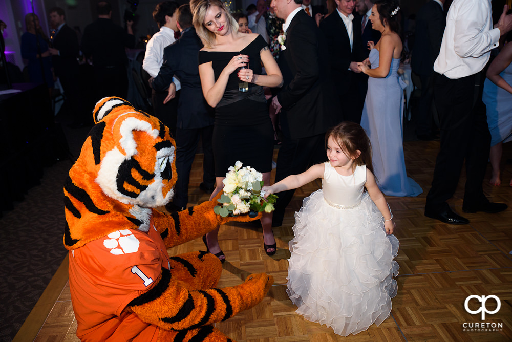 Flower girl and the Clemson Tiger.