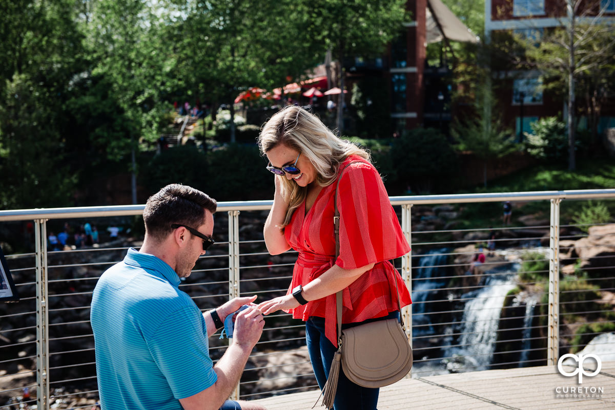 Woman says yes to a surprise marriage proposal in Greenville,SC.