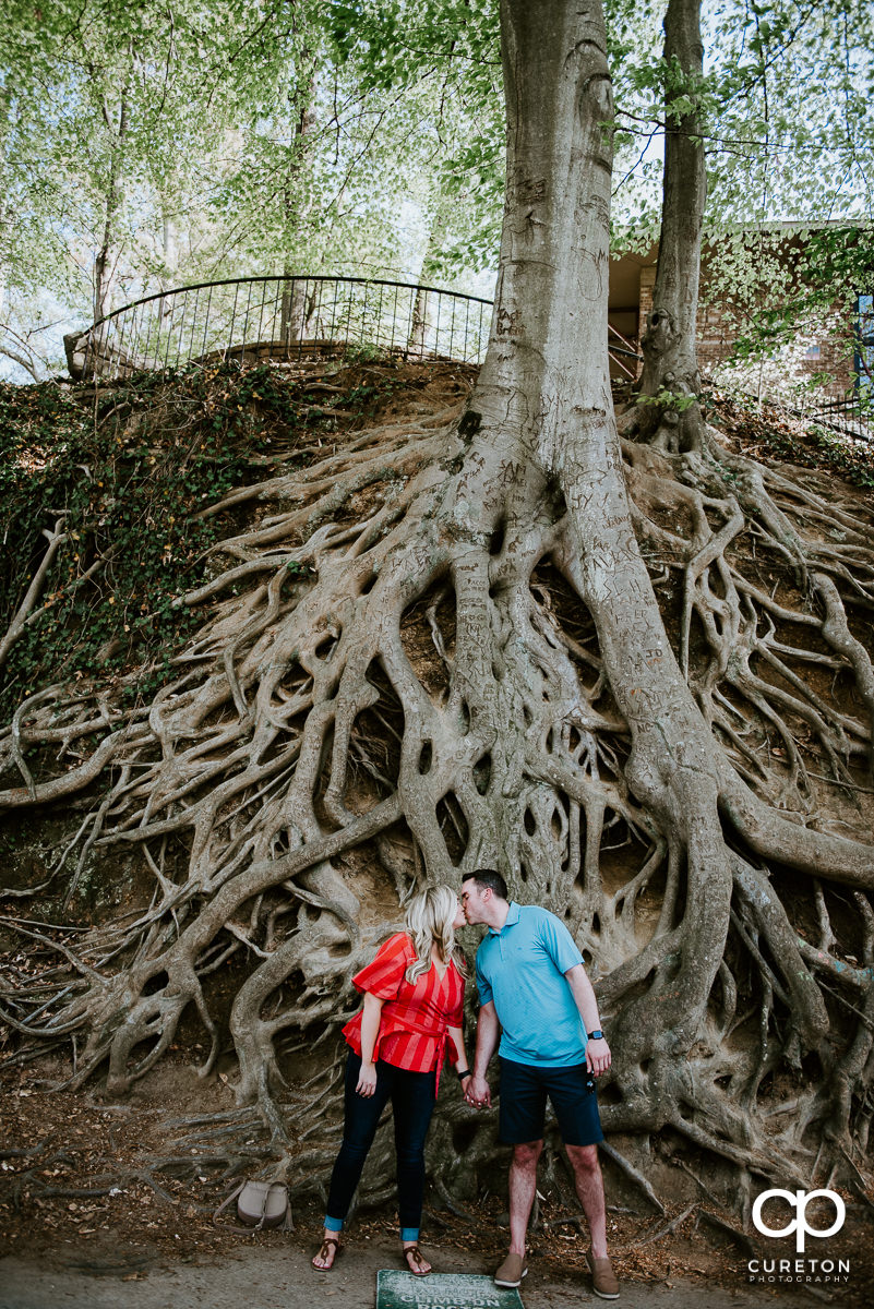 Newley engaged couple kissing underneath the roots tree in downtown Greenville ,SC.