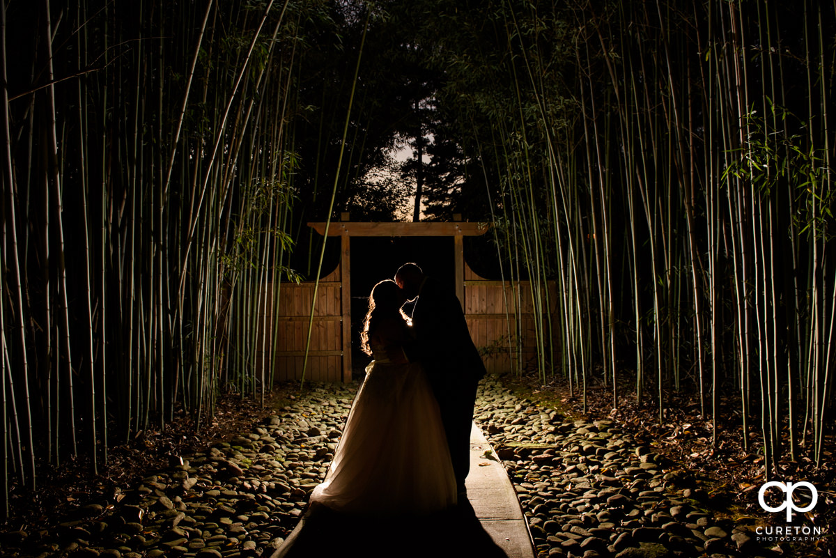 Bride and groom epic backlit photo in a field of bamboo at the Duncan Estate wedding reception in Spartanburg,SC.