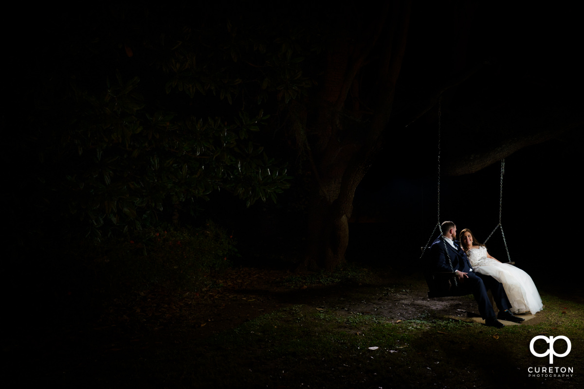 Bride and groom sitting in a tree swing.