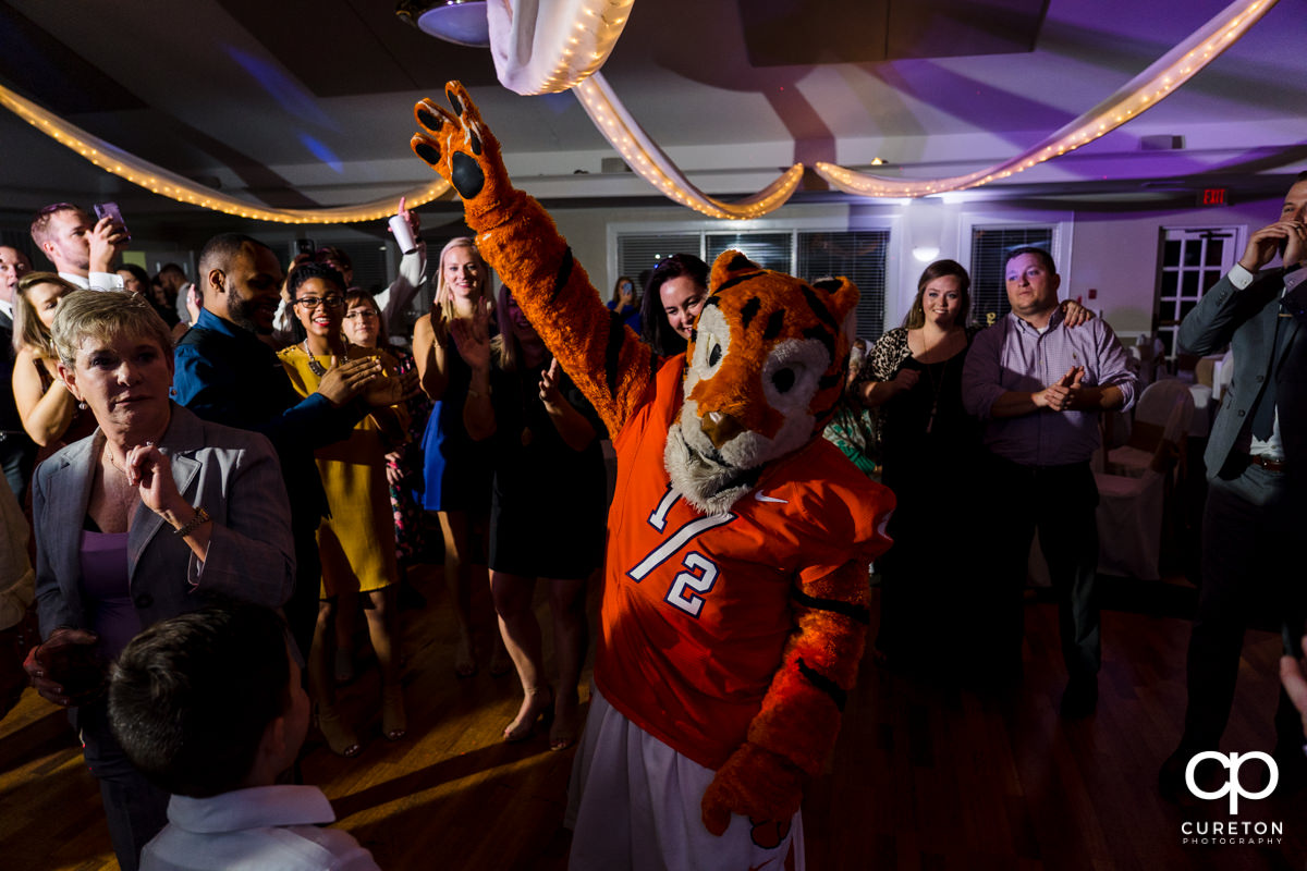Clemson Tiger Cub dancing at a wedding reception at Holly Tree.