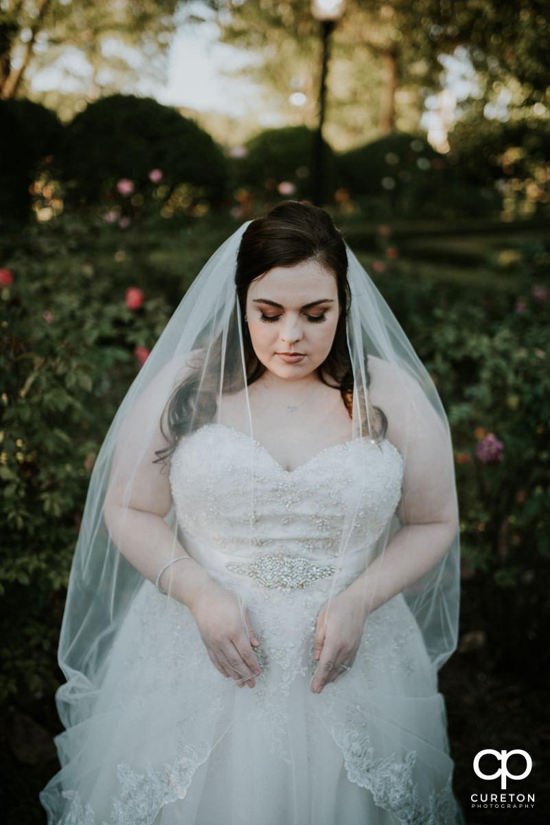 Bride looking down at her veil.