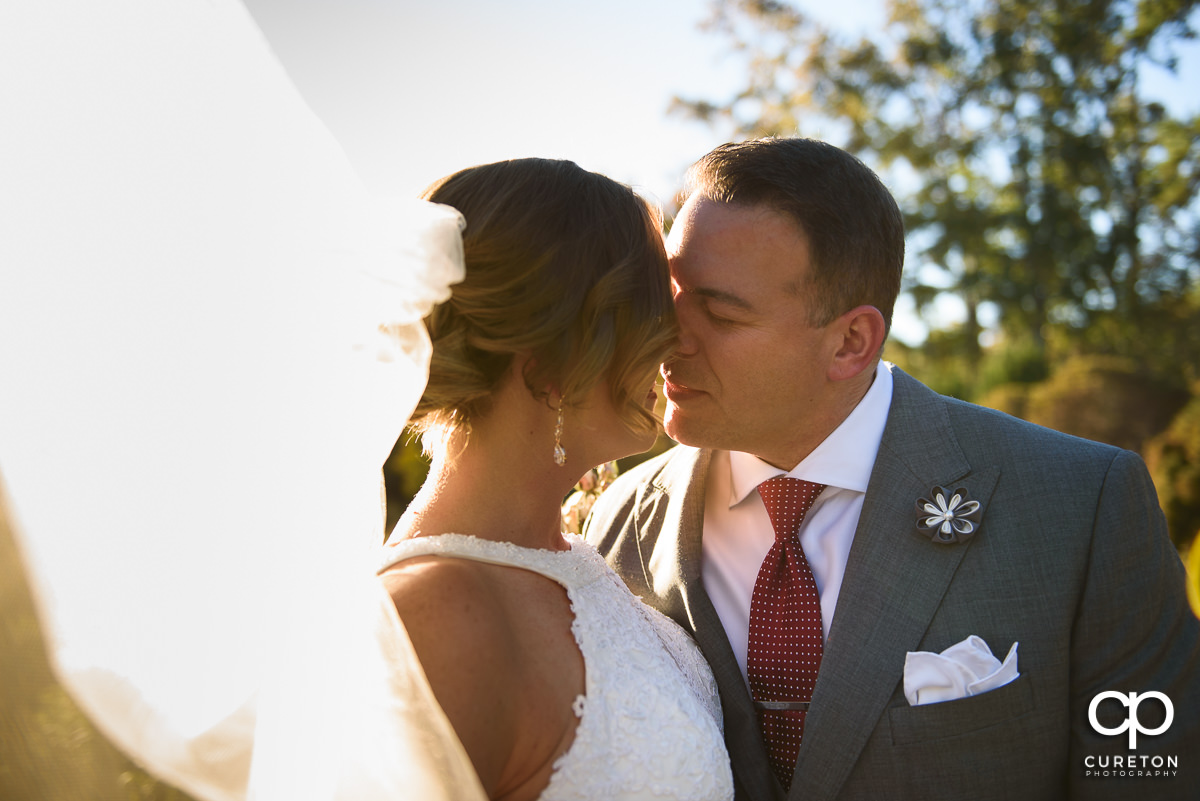 Groom kissing the bride in perfect sunlight.