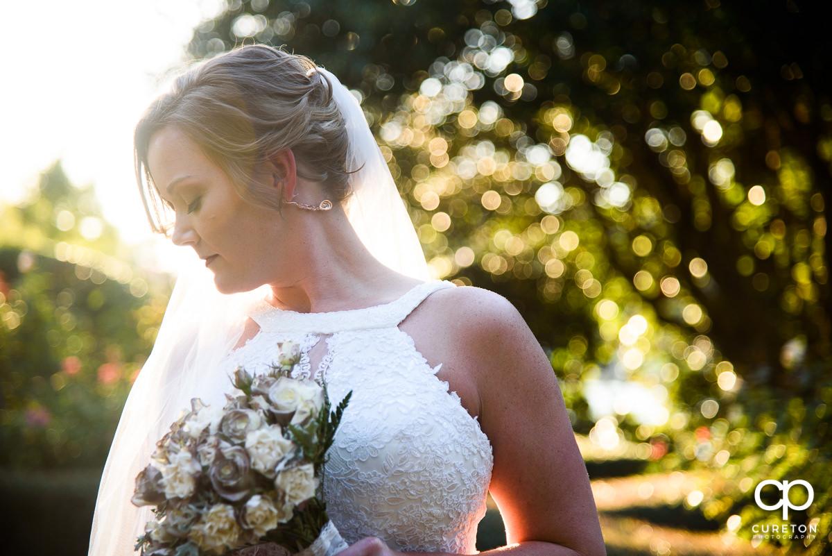 Gorgeous bride at golden hour before her Furman rose garden wedding.