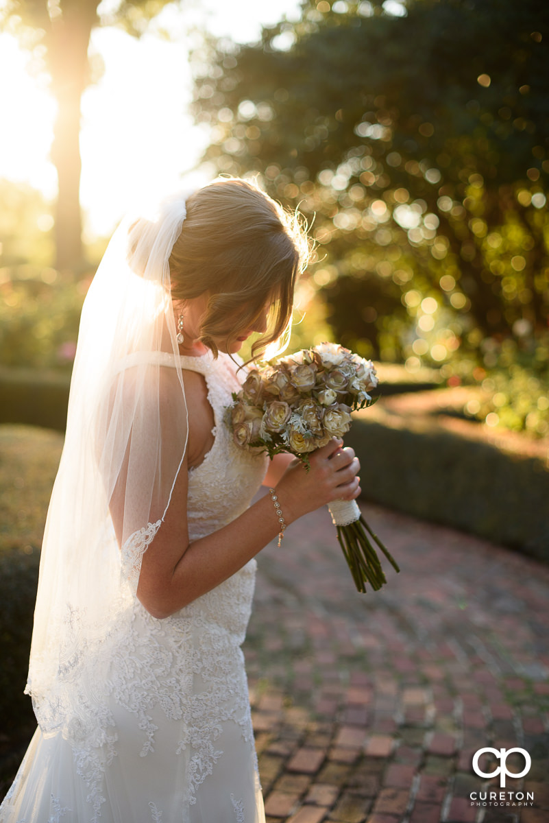 Bride smelling her flowers at golden hour in the rose garden.