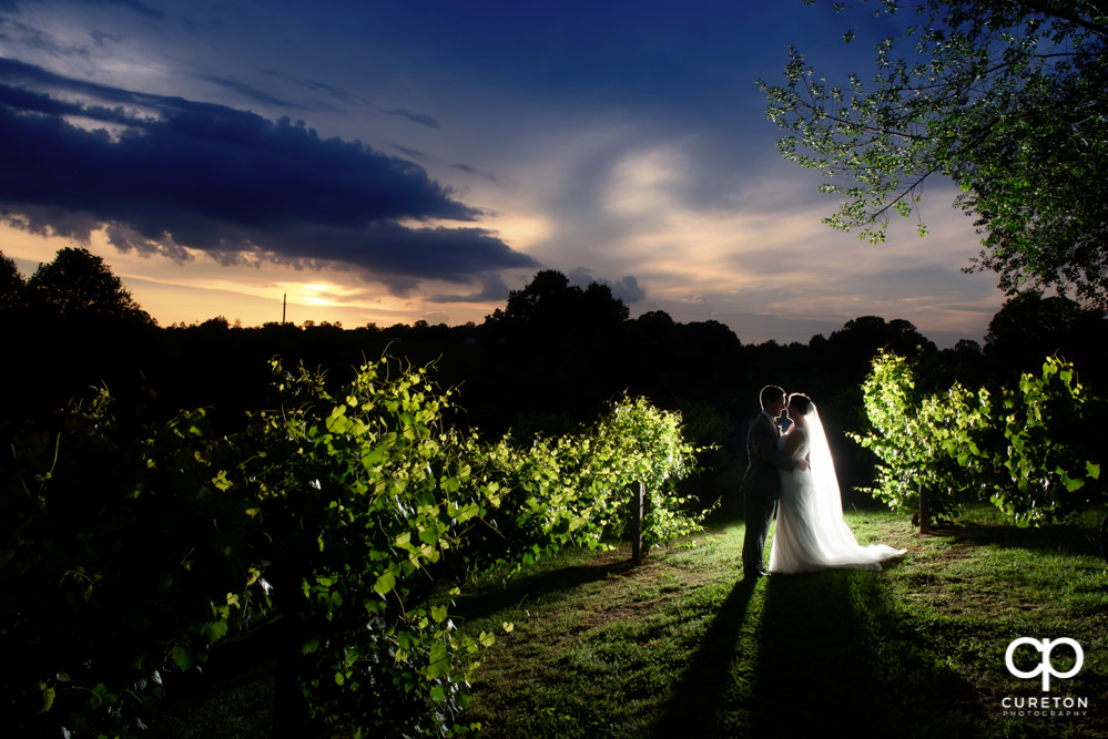 Bride and groom in the vineyard at sunset after their indoor wedding at Greenbrier Farms in Easley SC.