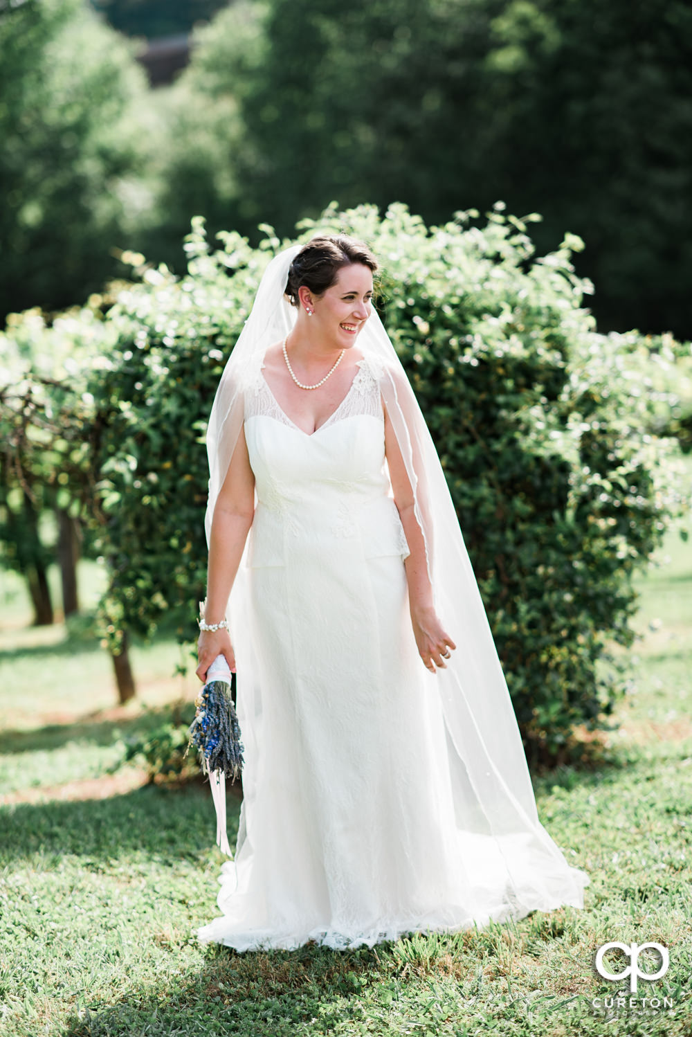 Bride in the vineyard at Greenbrier Farms.