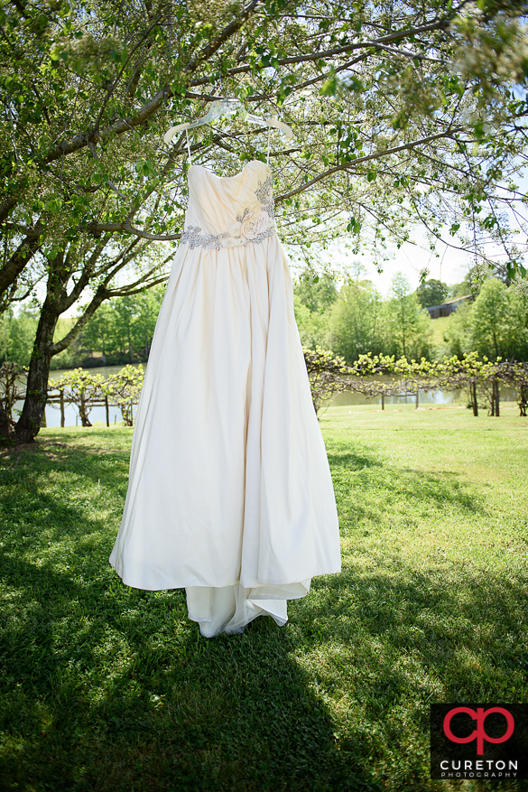 Bridal gown hanging on a tree at the farm.
