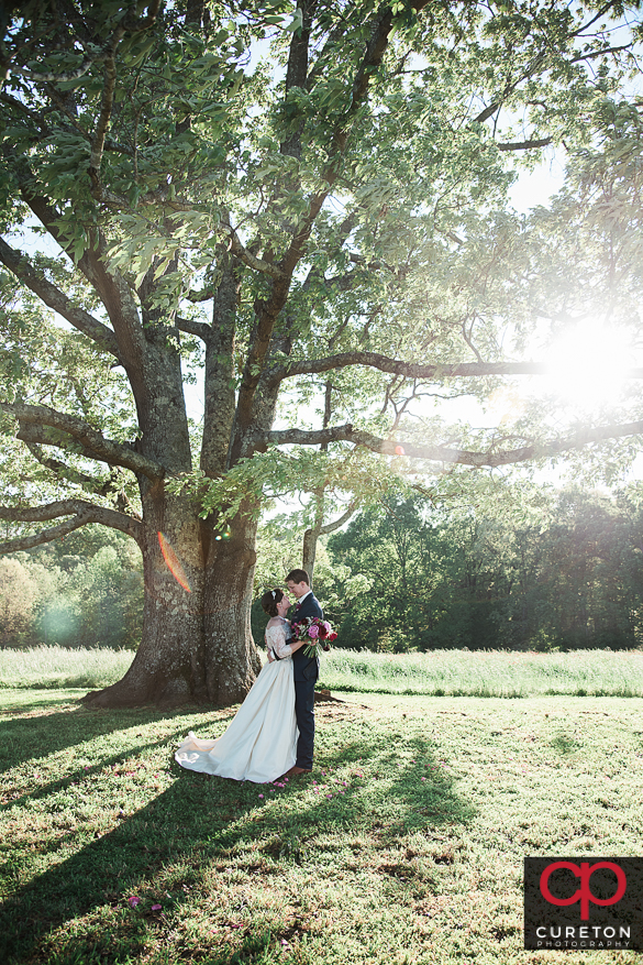 Epic bride and groom near the tree at Greenbrier farms after their wedding.