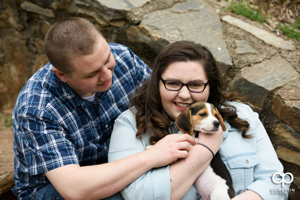 Engaged couple with a beagle puppy.