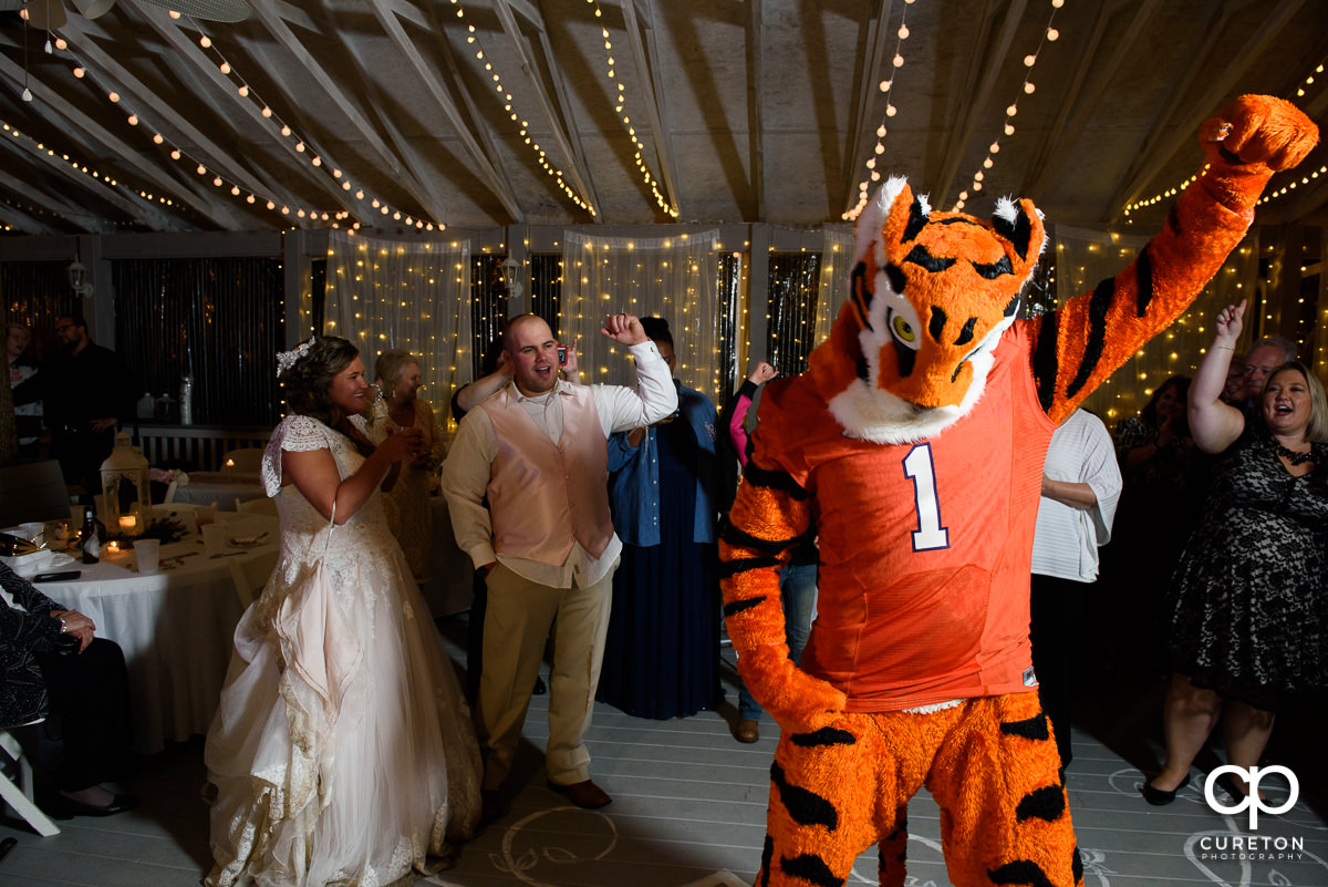 Bride and Groom wth the Clemson Tiger.