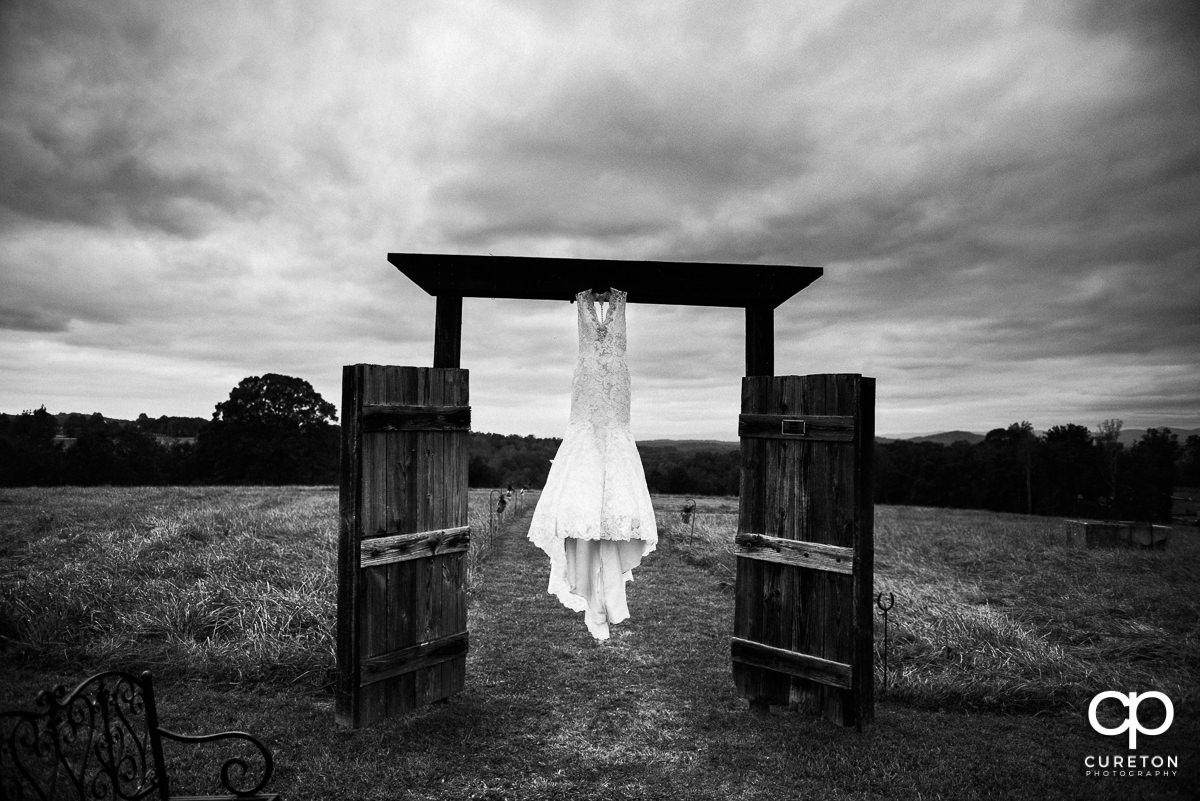 Bride's dress in a field.