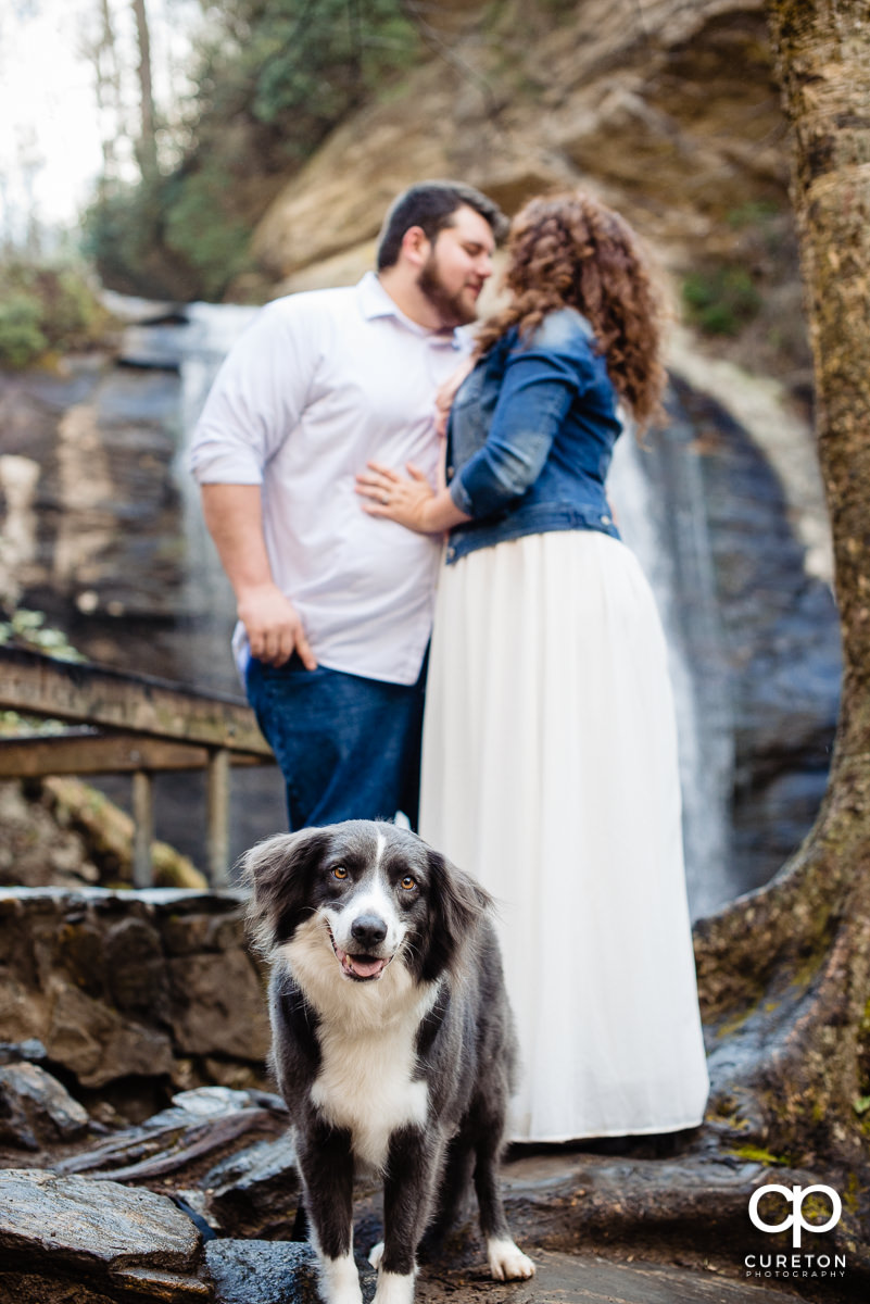 Bride and Groom taking a hike with their dog.