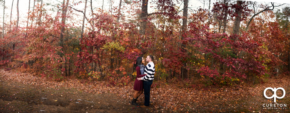 Engaged couple standing in the fall leaves at Paris Mountain.