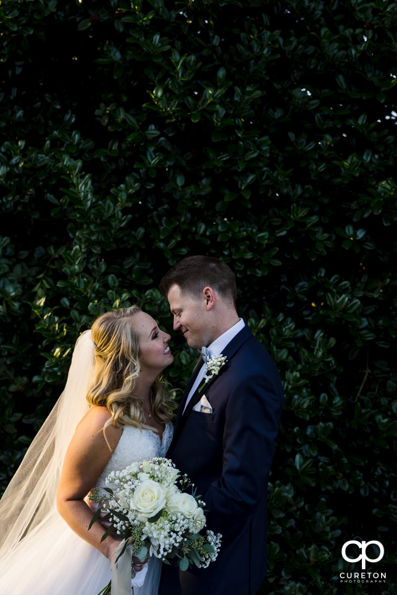 Bride and groom staring at each other in front of a wall of greenery.