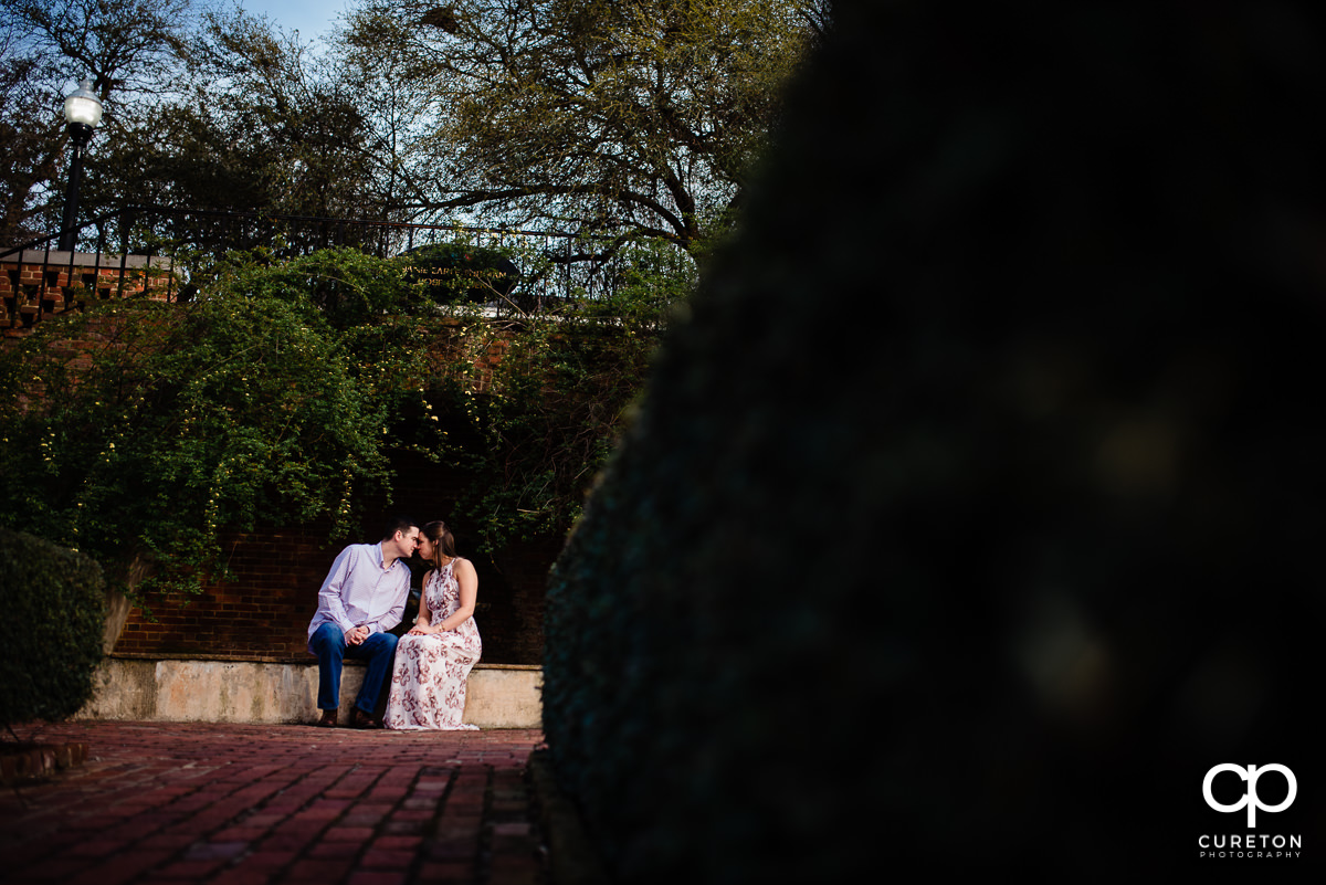 Man snuggling with his fiancee in the rose garden at Furman during an engagement session.