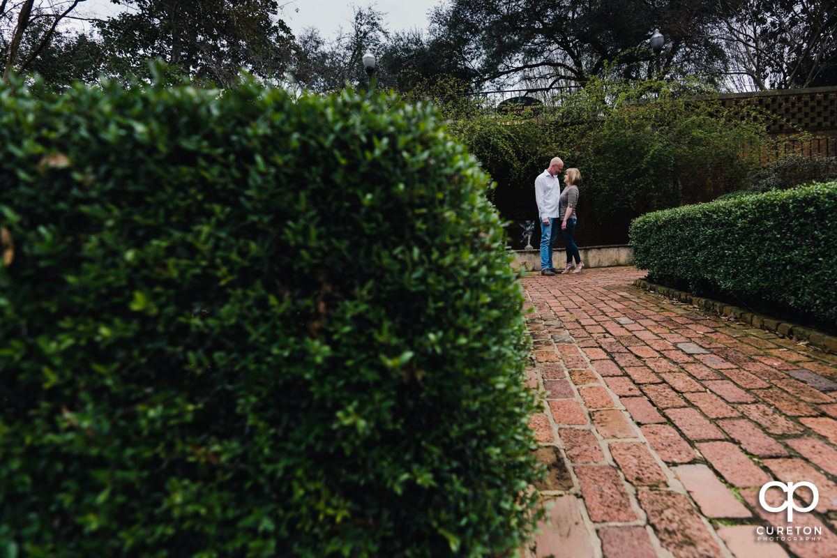 Engaged couple dancing in the rose garden during a Furman University winter Engagement session in Greenville,SC.