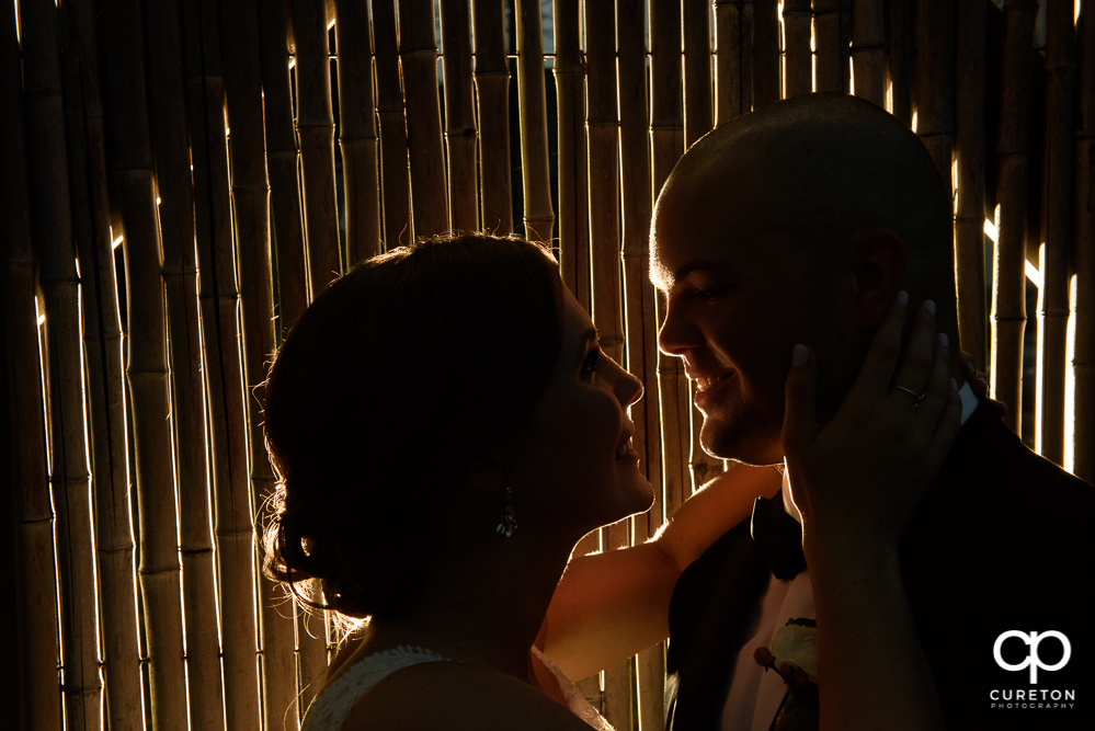 Bride and Groom silhouette during their wedding reception at Zen Greenville.