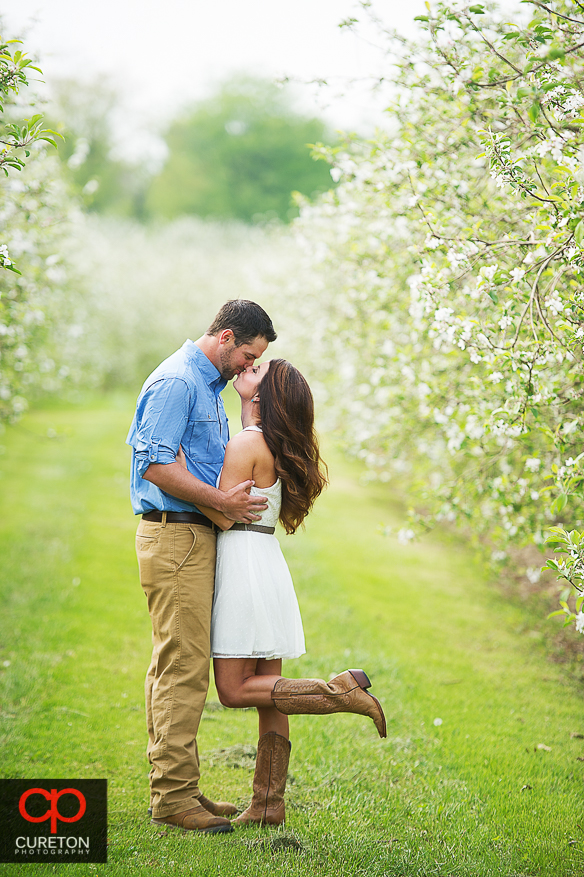 Couple standing in the middle of an apple orchard during their recent engagement session at an apple orchard in Hendersonville,NC.