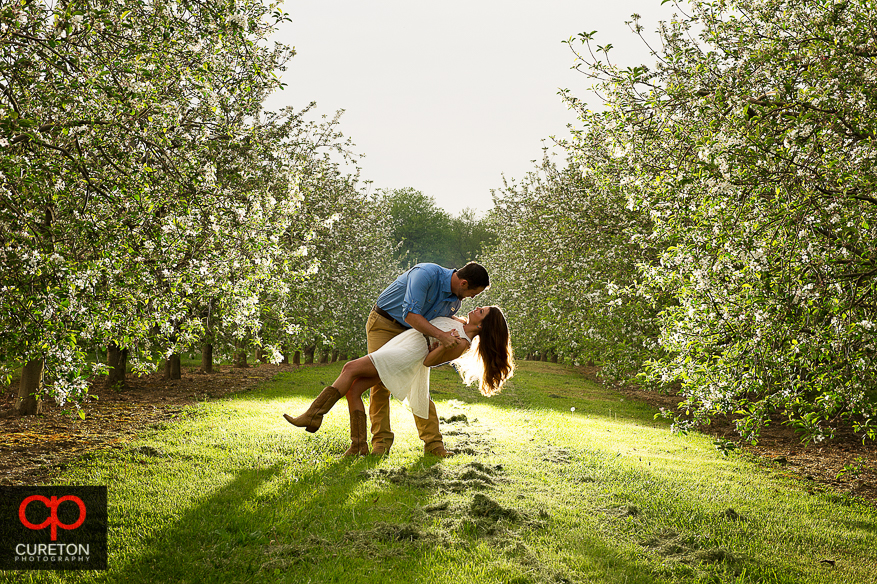 Couple dancing in the orchard during their recent engagement session at an apple orchard in Hendersonville,NC.
