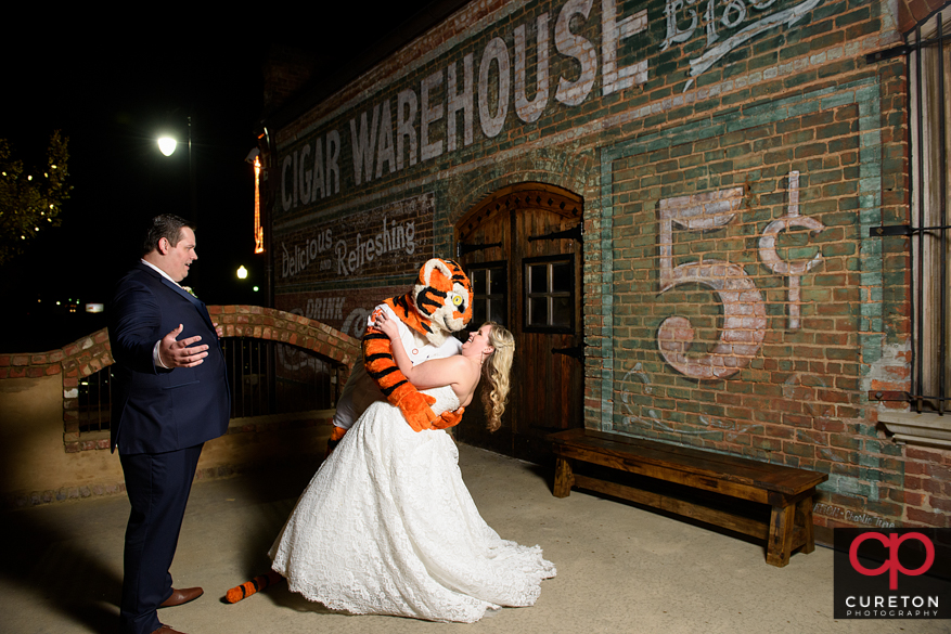Bride dips with the Clemson Tiger after her wedding.
