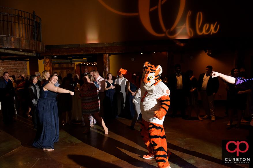 The Clemson. Tiger dancing.