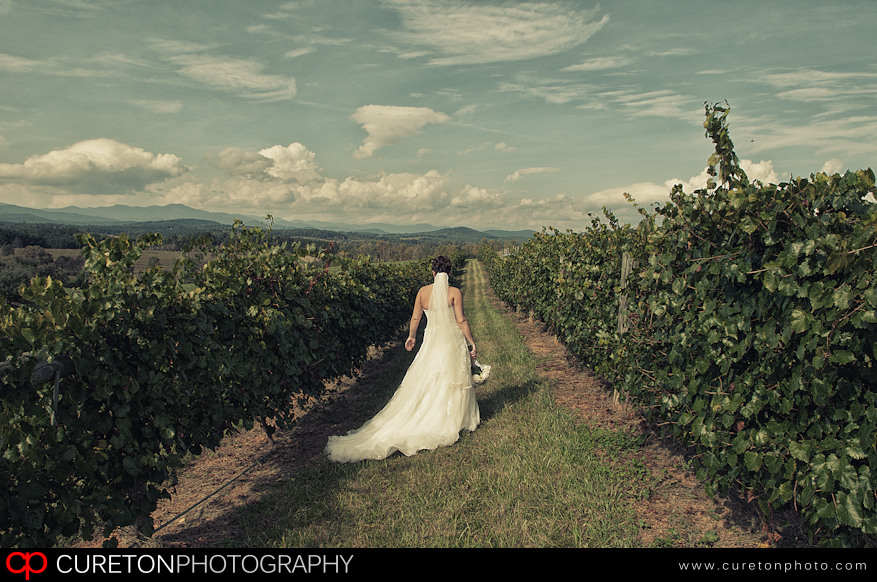 Bride in the vineyard at Chattooga Belle Farm in LOng Creek,SC.