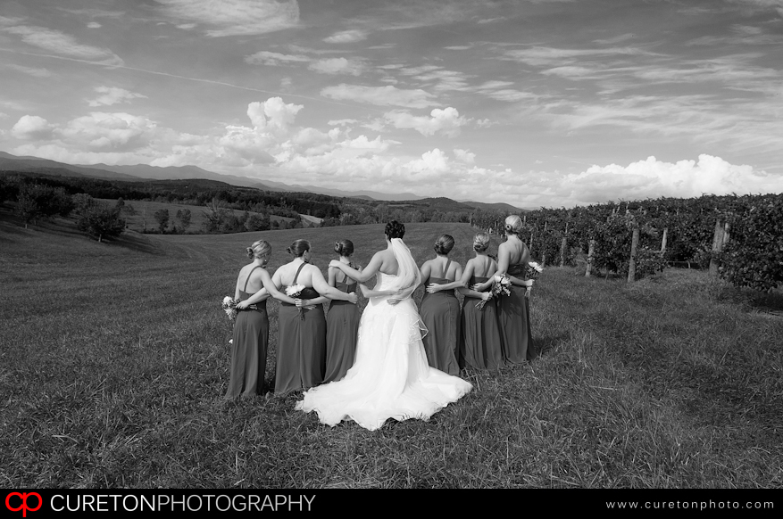 Brdiesmaids with their backs turned to view the SC mountains.