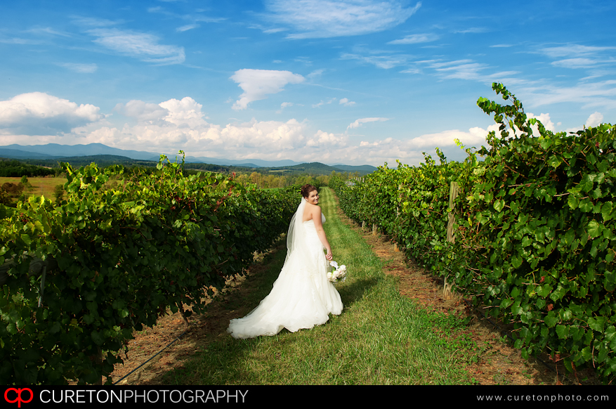 Bride before her wedding at Chattooga Belle Farm in the vineyards.