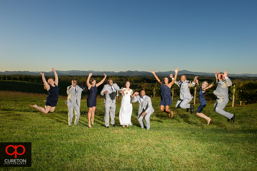 Wedding party jumping at Chattooga Belle Farm.