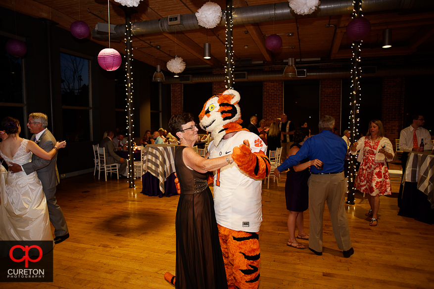 Wedding guest dance with the Clemson tiger.