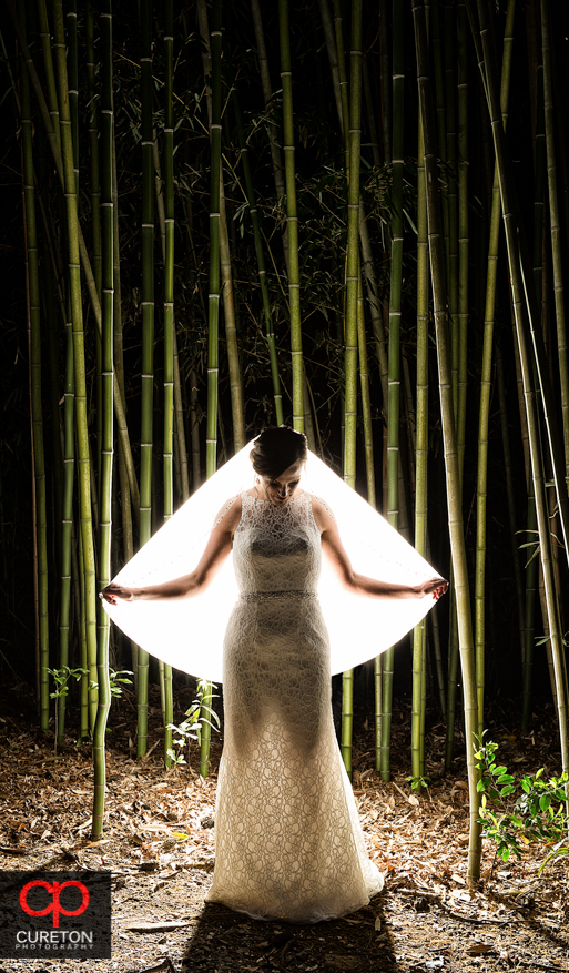 Bride and bamboo in Spartanburg,SC.