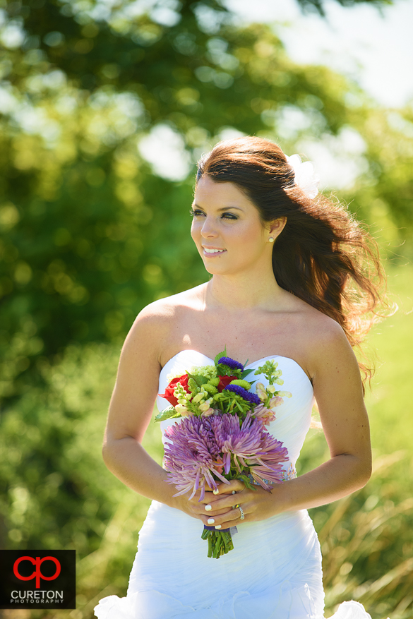 Bride with her hair blowing in the breeze during a Hendersonville, NC bridal session.