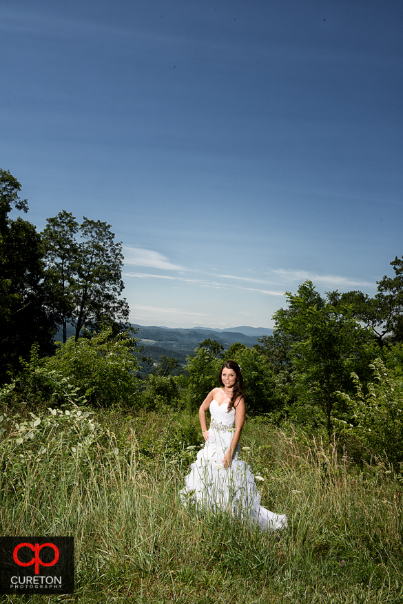 Bride standing in a field with the Blue Ridge Mountains behind her.