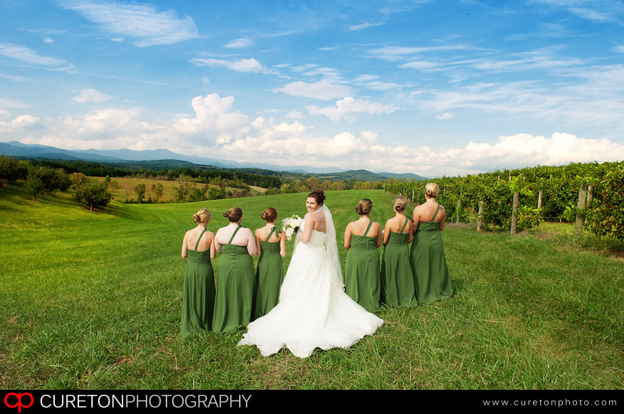 Bridesmaids in the field at Chattooga Belle Farm.
