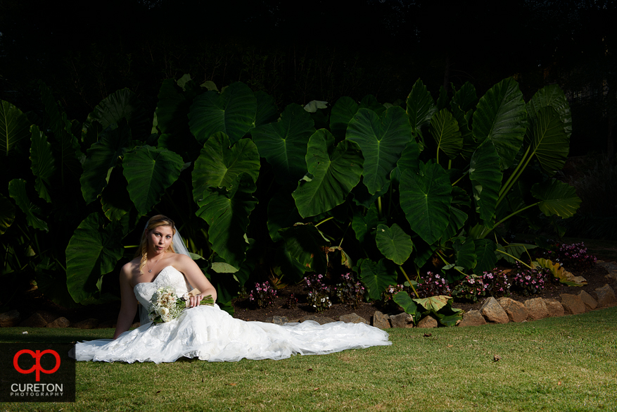 Dramtic photo in front of elephant ears at a recent Rock Quarry Garden bridal in Greenville,SC.