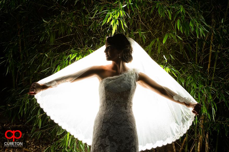 A bride backlit at the popular Greenville,SC wedding location, The Rock Quarry Garden.