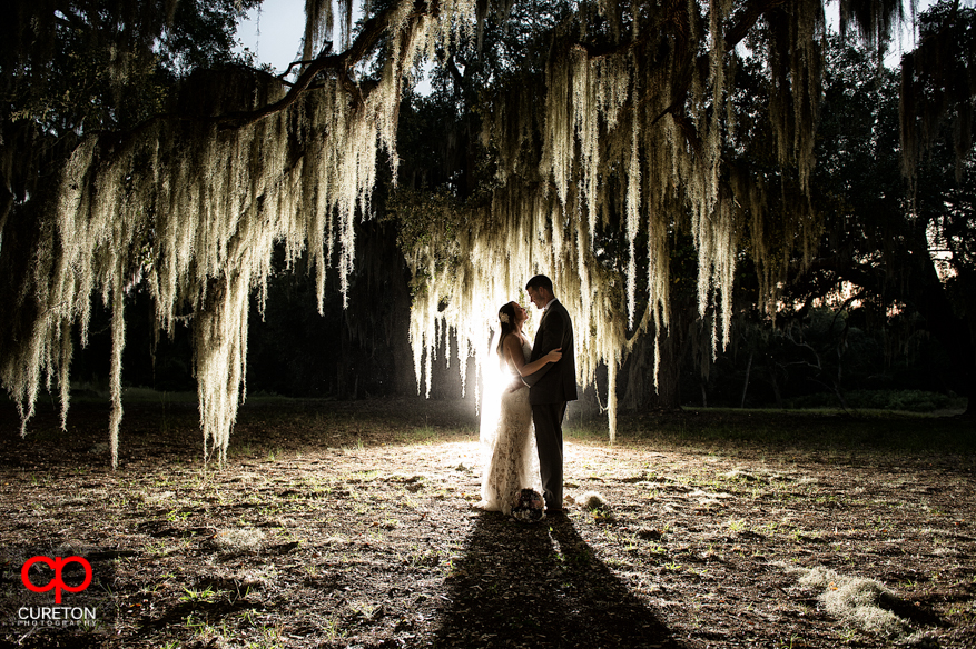 Bride and Groom standing n front of Spanish moss at San Souci Farms after the wedding.