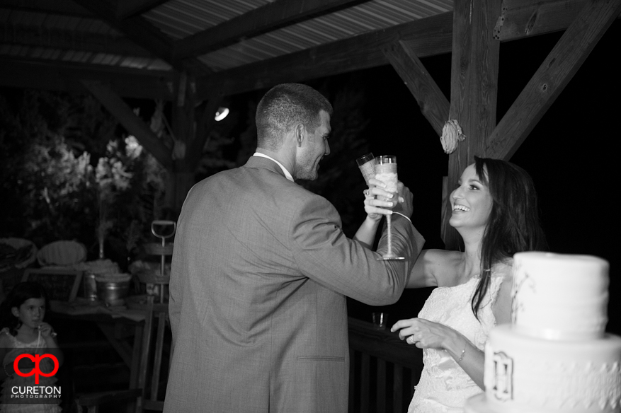 Bride and groom giving a toast.