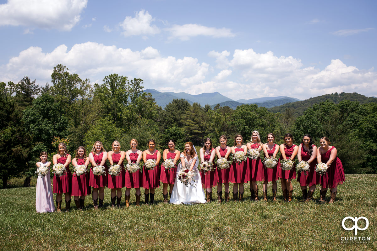 Bridesmaids in front of a mountain overlook in Asheville,NC.