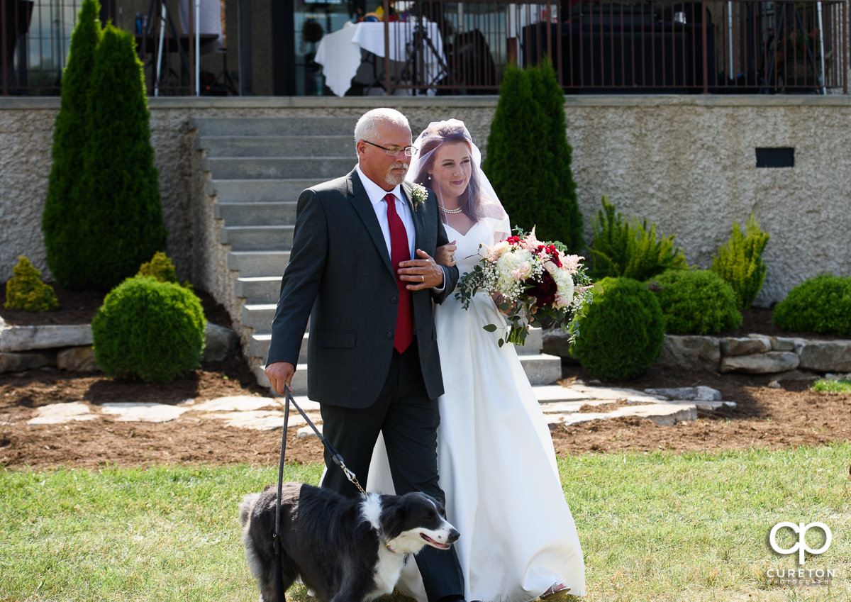 Bride, her father, and her dog walking down the aisle.